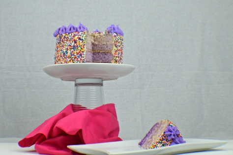 Purple Ombre Layered Sprinkle Cake   Revamperate